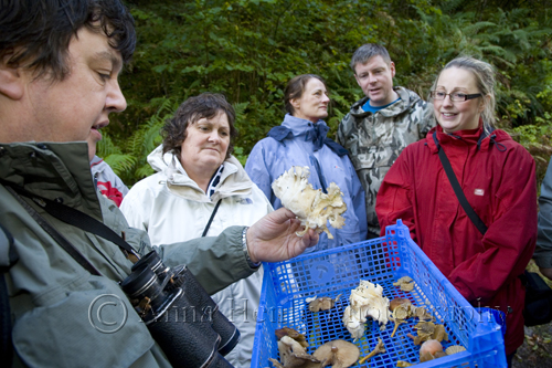 Dick Peebles shows us a fungus that we will be eating later on!