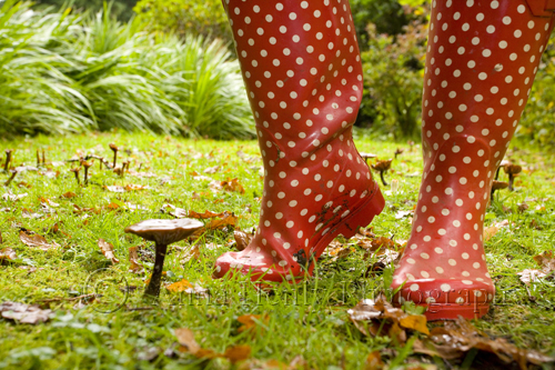 Unfortunately there weren't any red and white toadstools to be found to match the wellies.......