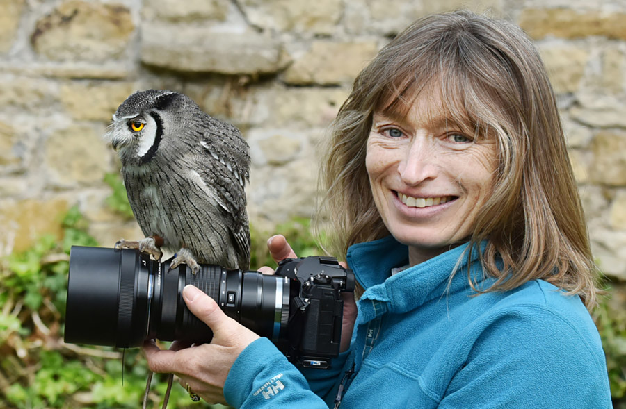 Anna and the Owl